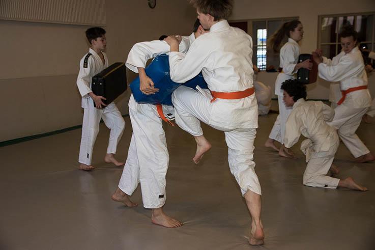 Jiu Jitsu lessen