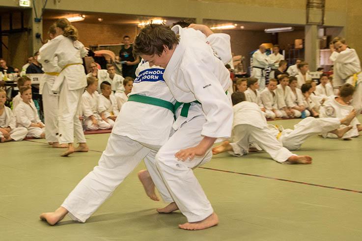 Jiui Jitsu lessen